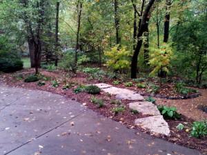 Garden featuring Redbud trees