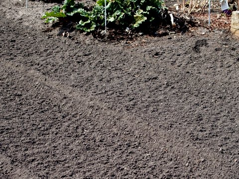 Improving soil quality knecht 39 s nurseries landscaping for Soil quality definition