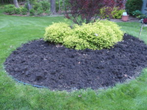 Annual bed prepped prior to planting